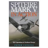 Spitfire Mark V in Action : Raf Operations in Northern Europe